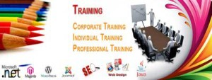 Top Software Training Institutes Ranking In Jabalpur