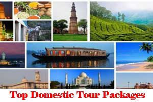 City Wise Best Domestic Tour Packages In India