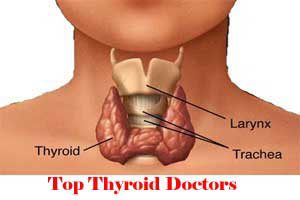 Top Thyroid Doctors In Meerut
