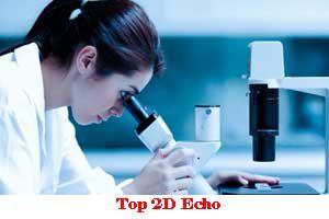 Top 2D Echo In Indore