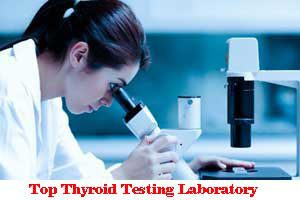 Area Wise Best Thyroid Testing Laboratory In Delhi NCR