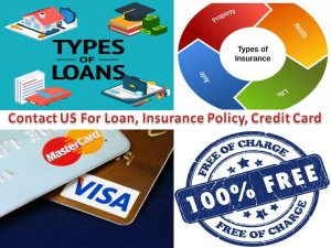 Contact US For Loans, Insurance Policy, Credit Card